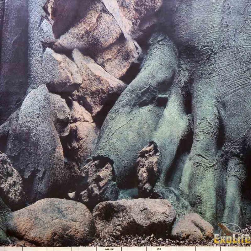 Фон корни деревьев